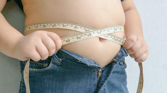 Naukowcy wykryli zmiany w mózgu u otyłych dzieci