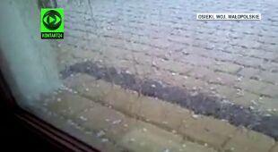 Nawałnice w Polsce. Środa burzowa m.in. w Małopolsce i na Pomorzu Zachodnim (TVN24)