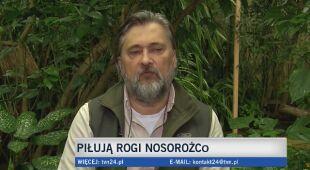 Dyrektor warszawskiego zoo o odcinaniu rogów nosorożcom
